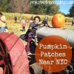Pumpkin Patches Near NYC: Secor Farms