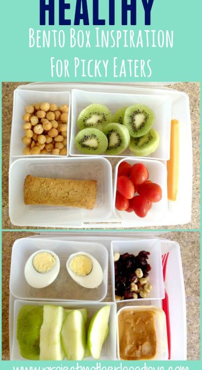 Healthy Bento Box Inspiration For Picky Eaters