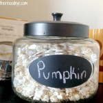 Pumpkin Spice Popcorn Trail Mix