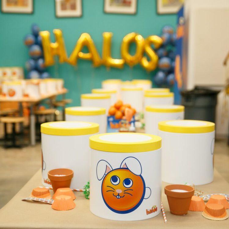 Crafting With Wonderful Halos